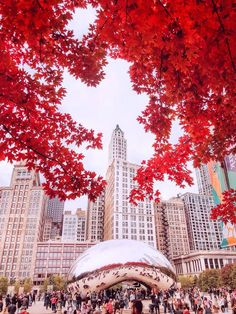 Excellent Photography Tips For Shooting Great Photos – Photography Chicago Travel, Chicago City, Chicago Illinois, Chicago Vacation, Chicago Trip, Chicago Photography, Autumn Photography, City Photography, Photography Courses