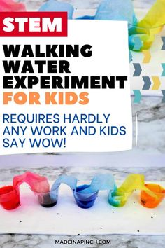 Fun & Easy Rainbow Walking Water Experiment Stem Projects For Kids, Science Projects For Kids, Fun Activities For Kids, Worksheets For Kids, Water Experiments For Kids, Science For Toddlers, Easy Science Experiments, Science Ideas, Walking Water Experiment