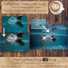 Freebies and Tutorials for Photographers and Digital Designers for Photoshop, Photoshop Elements, and Lightroom. Photoshop Elements Actions, Underwater Images, Photo Editing Tools, Make Photo, Photo Manipulation, Original Image, Lightroom Presets, Design Elements, Coffee Shop