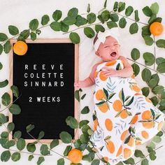 Shop the best brands in baby and kids clothing and accessories. Rylee & Cru, Mini Rodini, Oeuf, Little Unicorn, Milk Barn and more. Nursery Themes, Nursery Ideas, Baby Cake Smash, Kids Pages, Baby Nest, Little Unicorn, Stylish Kids, Baby Girl Fashion, Clementine Ideas