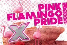 Pink Flamingo Pride at X Bar.