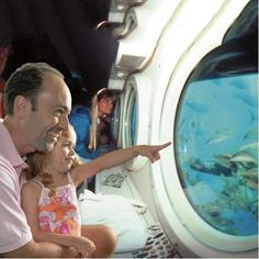 Travel by boat to the Atlantis Submarine that will take you approximately 100 feet below the ocean's surface. You'll explore the wonders of Chankanaab's underwa Hawaii Vacation Packages, Hawaii Vacation Rentals, Hawaii Travel, Dream Vacations, Aloha Hawaii, Hawaii Activities, Adventure Activities, Cruise Excursions, Shore Excursions