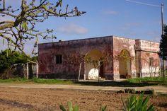 house in puglia
