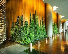 hotel lobby PARKROYAL on Pickering Interior_Hotel Lobby_Living Wall_Photo Credit;