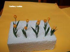 Son plantas herbáceas y bulbosas . Los bulbos son truncados basalmente y elongados hacia el ápice, cubiertos por una túnica usua...