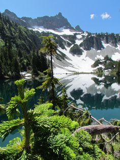 Snow Lake, Mt. Ranier