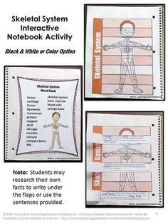 Have your students get creative with a skeletal system project ...