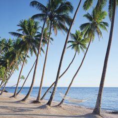 Ahh, Fiji.. Namale Resort & Spa's scenic beach.