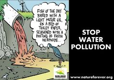 Be Part of the Solution not the problem.  Be careful about what you throw down your sink or toilet. Don't throw paints, oils or other forms of litter down the drain.   Use environmentally household products, such as washing powder, household cleaning agents and toiletries.   Share to create awareness a little help will go long way.