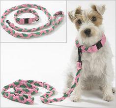 Hundeset Leine und halsband