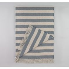 Draper Stripe Chinois BLue Throw from the Dwell Sample Sale