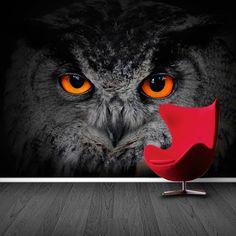 Tattoo cute animal eyes 65 Ideas for 2019 Owl Wallpaper Iphone, Bike Wallpaper, Movies Wallpaper, Cats Wallpaper, Animal Wallpaper, Colorful Wallpaper, Fabric Wallpaper, Iphone Wallpapers, Owl Cat