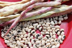 """Cowpeas also known as Black Eyed Peas are a great source of protein and grow like mad in my heirloom garden.  2 packs of seed made about a 30 foot row and produced nearly 4 pounds of shelled """"peas.""""  Blackeyed peas are actually a bean.  Read more at Friends Drift Inn blog."""