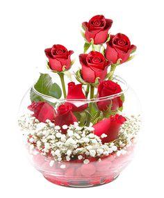 İstanbul çiçekçi ile sevgiller günü için cam fanus da gülleri 49 Tl den başlayan fiyatlar ile istanbul çiçek siparişi verebilirsiniz. http://www.cicekvitrini.com/