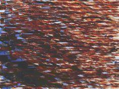miguel ferrer 2015 digital