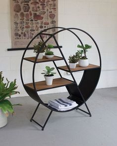 shelving by les spectacles