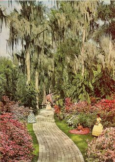 Cypress Gardens.looking forward to all those spring flowers!