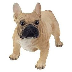 Hughie the Realistic Standing Brown French Bulldog Garden Ornament