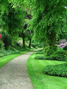 43 Best Greenery Wallpapers Images Greenery Green Nature