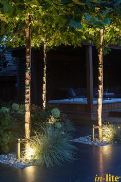 Levend groen | Platanen | Tuinverlichting | Grondspot NERO | 12V | Inspiratie