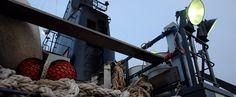 """Open Ship der Sam Simon: """"Auf den Sea Shepherd-Schiffen schlemmen wir vegan!""""   Ist das vegan oder kann das weg?"""