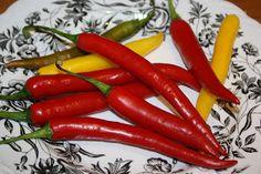 Ruokasurffausta: Helppo ja nopea sweet chili kastike