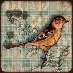 Paint an image on scrapbook paper.