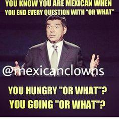 The 11 Funniest Latino Memes On The Internet Hispanics Community