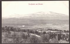 Fondfjeldet ved Meråker i Nord-Trøndelag N.K. 386