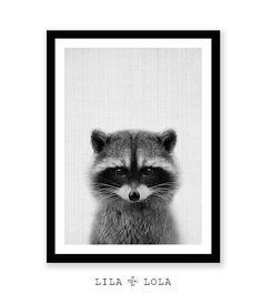 Print 79 - Racoon Print, Woodlands Nursery, Wall Art, Modern Minimal Black and…