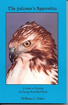 BIRD PREY ETCHED WHISKEY TUMBLER GLASS CHRISTMAS  GIFT PRESENT RAPTOR HAWK EAGLE