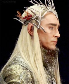 """I don't like Thranduil."" *blinks while slowing turning, then gives them the Thranduil death glare*"