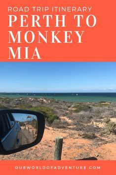 Considering a Perth to Monkey Mia road trip? Here you'll find detailed itineraries to help you plan the Perth to Monkey Mia road trip of a lifetime! Visit Australia, Western Australia, Australia Travel, Scuba Diving Australia, West Coast Road Trip, Australian Beach, Travel Inspiration, Travel Ideas, Travel Tips