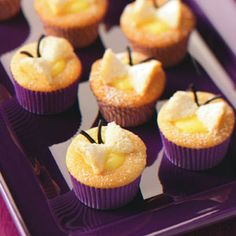 Lemon, butterfly cupcakes