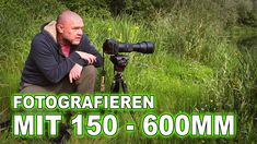 FOTOGRAFIE mit dem SIGMA 150-600 mm | KORMORAN gesucht - TEICHHUHN gefunden Investing For Retirement, Number 10, Home Insurance, Famous Quotes, Workplace, Grey Heron, Water Pond, Studying, Famous Qoutes