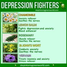 St. John's wort for depression