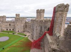 This castle in Wales is bleeding flowers for the most tragically beautiful reason