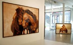 """""""the work of Roberto Dutesco and his stunning photos of Sable Island horses"""" - elementsofstyle"""