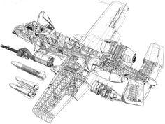 A10 Warthog Cutaway