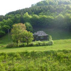 nature-Carpathian Mountains