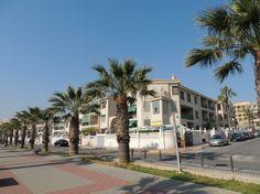 REF 634 : 2 Slaapkamer appartement in Guardamar del Segura € 425,- p/m   Leuk Appartement te huur voor lange termijn. Het appartement beschikt over 2 slaapkamers, 1 badkamer, een lichte woonkamer, ruim balkon van 14m2, Garage, Lift en meer. Zie voor alle opties onze website. Daarnaast ligt het appartement op slechts 150 meter van het strand. Bij het complex zijn gezamenlijke tuinen en een zwembad. Alles is op loopafstand te bereiken vanaf dit appartement.