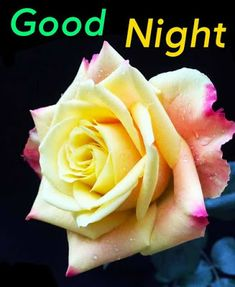 Good Night Images Good Night For Him, New Good Night Images, Romantic Good Night Image, Lovely Good Night, Beautiful Good Night Images, Good Night Moon, Good Night Messages, Good Night Quotes, Good Morning Cards