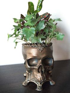 """Human Skull Planter - Bronze By: Dellamorte & Co. -Life sized sculpture of a hollow human skull set into an ornate base. -10"""" tall and cast in resin, hand painted. A unique handmade gift for the dark soul in your life."""
