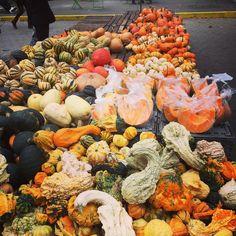 M A G G I E, the pumpkin RDN (@onceuponapumpkin) • Instagram photos and videos