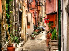 sunsurfer:  Sidestreet, Vernazza, Cinque Terre, Italy  photo by fedeo253