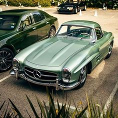 Green with envy. A Mercedes captured by Mercedes Benz 300 Sl, Mercedes Benz Autos, Retro Cars, Vintage Cars, Bmw M235i, Mercedes Classic, Beverly Hills Cars, Audi, Mercedez Benz