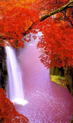 Science Discover Beautiful fall scenery and gorgeous magical waterfall. Nature is so amazingly gorgeous Fall Pictures Nature Pictures Pretty Pictures Beautiful Waterfalls Beautiful Landscapes Beautiful World Beautiful Places Foto Nature Amazing Nature Fall Pictures, Nature Pictures, Pretty Pictures, Beautiful Nature Wallpaper, Beautiful Landscapes, Beautiful World, Beautiful Images, Landscape Photography, Nature Photography
