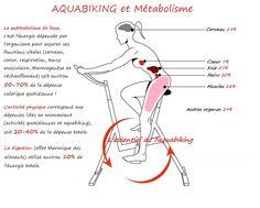 Aquabiking et méthabolisme