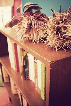 Proteas on old bookshelf.  www.anartistisneverpoor.blogspot.com