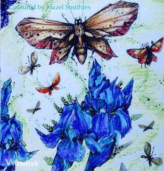 From Po Drugiej Stronie Snu- Karolina Kubikowska in Prismacolor Premier pencils #karolinakubikowska #podrugiejstroniesnu